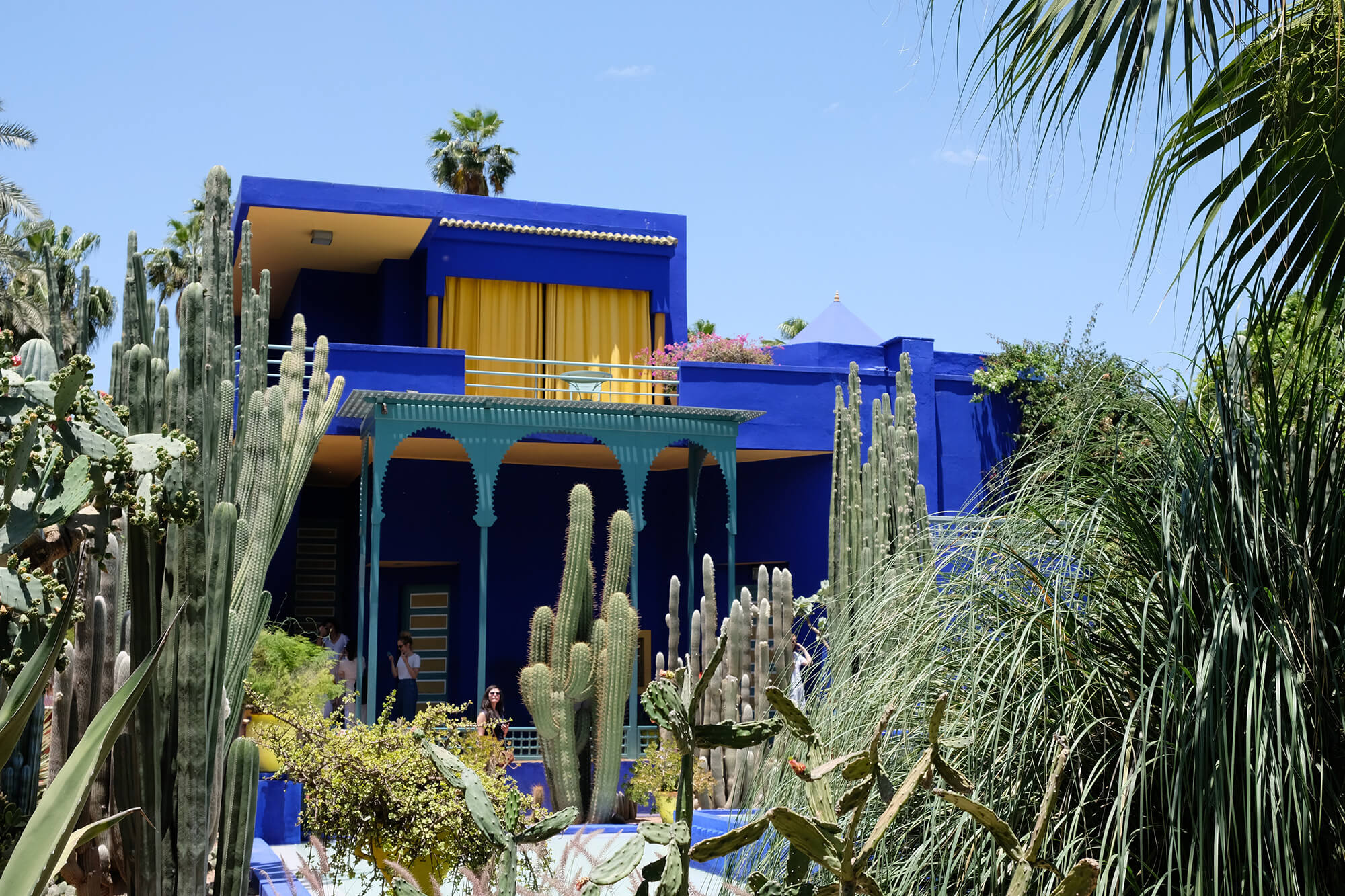 Sahara Desert Tour - Top Ten Things To Do in Morocco - Roam around Jardin Majorelle