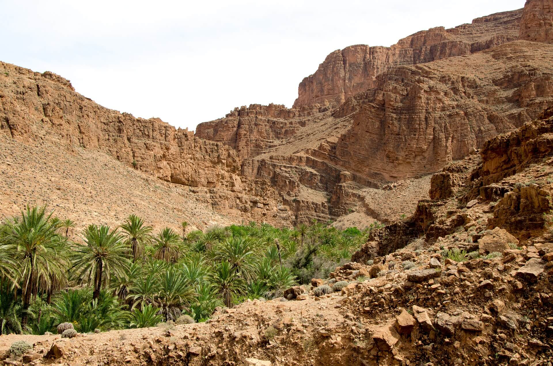 Sahara Desert Tour - Top Ten Things To Do in Morocco - Visit a Desert Oasis