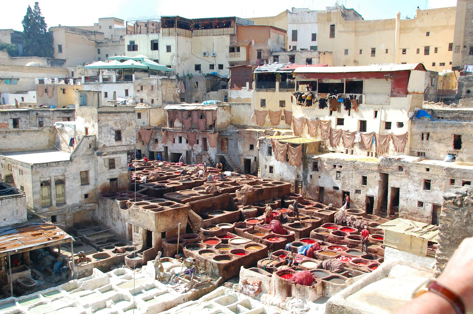 Sahara Desert Tour - What To Do and See in Fez - Chouara Tannery