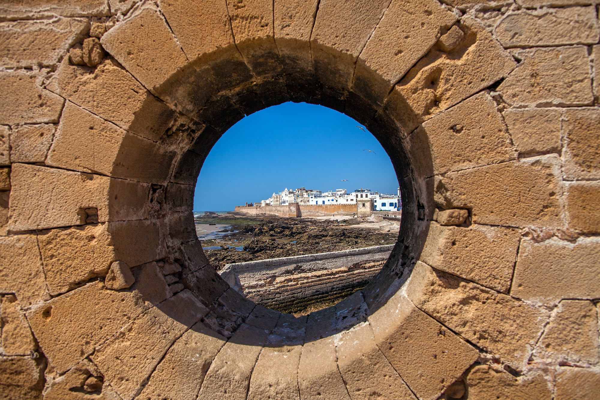 What to See and Do in the magical city of Essaouira