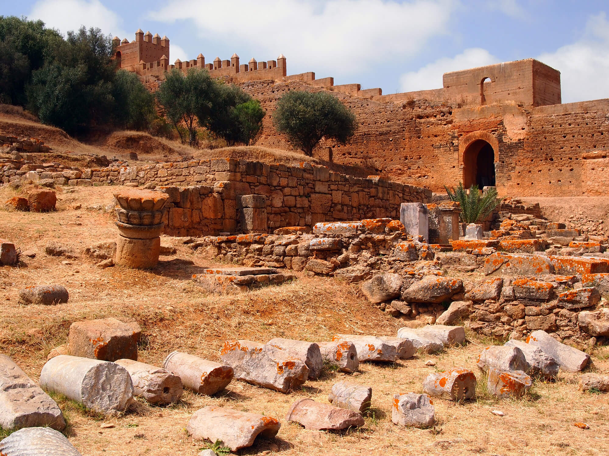 What to See and Do in Rabat: The Capital of Morocco - Chellah