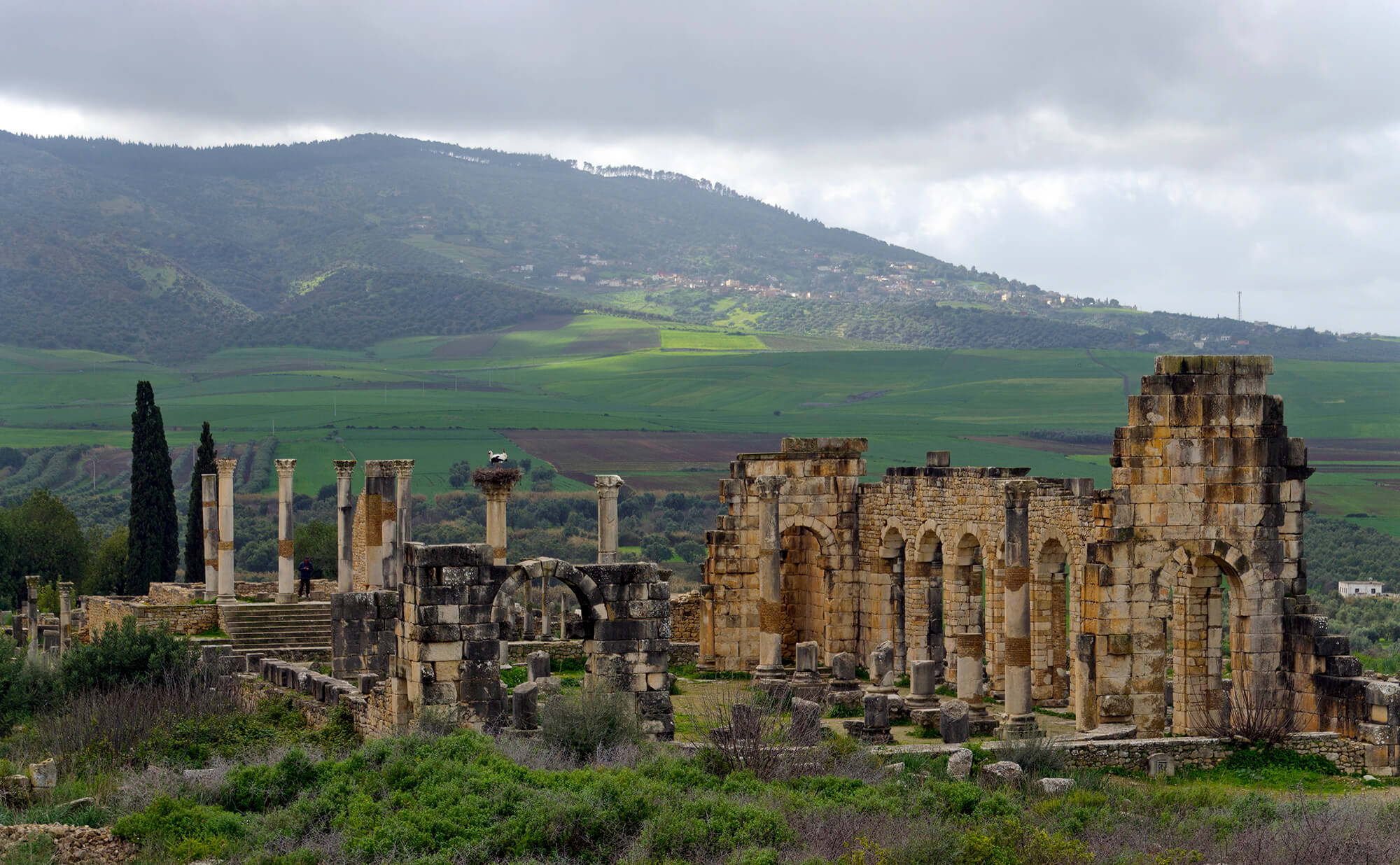Sahara Desert Tour - What to See and Do in Meknes, one of Morocco's Grandest Ancient Cities - Volubilis