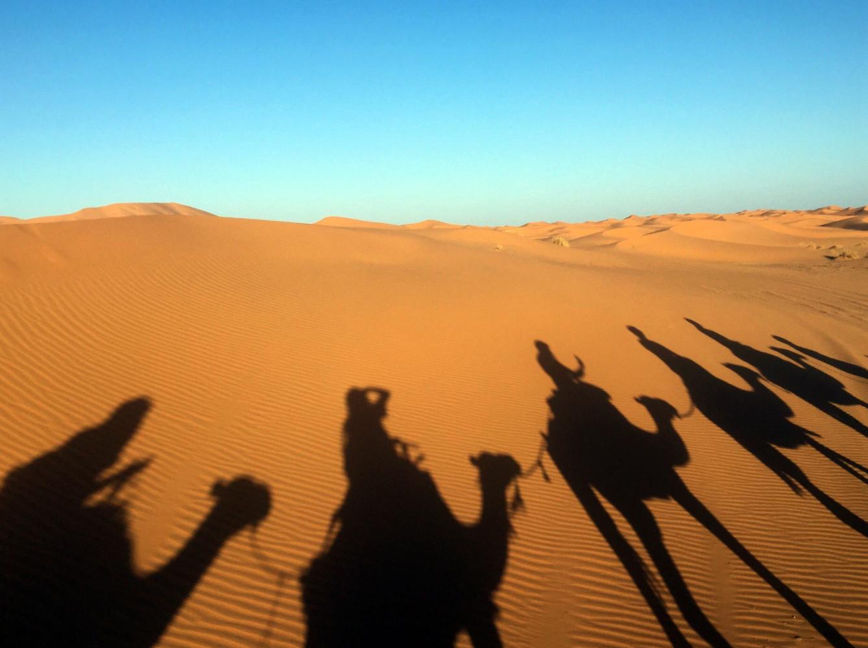 Sahara Desert Tour - Camel Trekking In The Desert